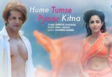 Hume Tumse Pyar Kitna Lyrics In Hindi